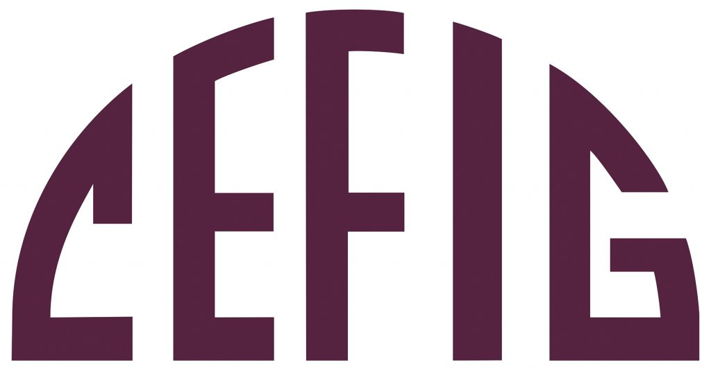 Logo CEFIG